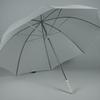 parapluiefairwaywhite1