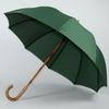 parapluie de berger vert 3