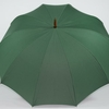 parapluie de berger vert 4