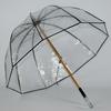 parapluie transparent francais 2