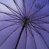 parapluie étoile bleu