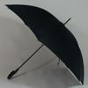 parapluiegovernor2