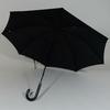 parapluiegovernor3