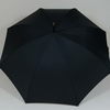 parapluiegovernor4