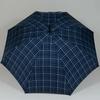 parapluiehuntsmancheck1