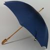 parapluiemister2