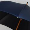 parapluiemister4