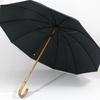 parapluieberger2
