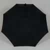 parapluiebloomsbury2