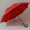 parapluierouge2