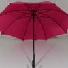 parapluierose5