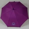 parapluieviolet2