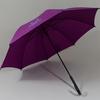 parapluieviolet3