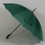 parapluieetoilevert2