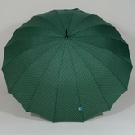 parapluieetoilevert3