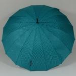 parapluieetoilebleu2
