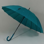 parapluieetoilebleu3