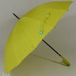 parapluieetoilepistache1