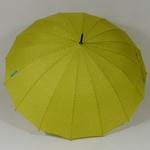 parapluieetoilepistache2