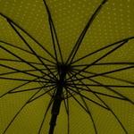 parapluieetoilepistache5