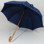 parapluieeternelbleu3