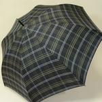 parapluiesportalucheck1