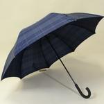 parapluiesportalunavy2