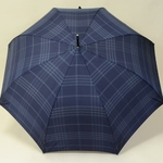 parapluiesportalunavy1