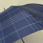 parapluiesportalunavy3