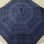 parapluiesportalunavy5