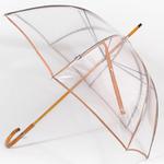 parapluietransparent2 copy