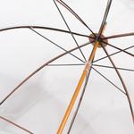 parapluietransparent4 copy
