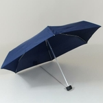 parapluieesbrellableu1