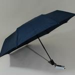 parapluiebaltibluestar1