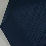 parapluiebaltibluestar4