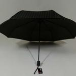 parapluiebaltibrownstar3