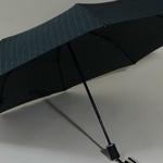 parapluiebaltigreystar5