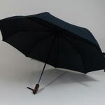 parapluieboston3