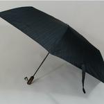 parapluiebostonbrown2