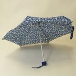 parapluieboutonor4