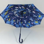 parapluieprintemps3