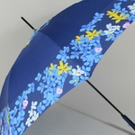 parapluieprintempsII5