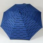 parapluieglambleu2