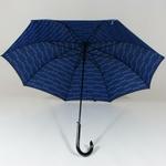 parapluieglambleu4