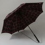 parapluieglam3