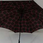 parapluieglam5