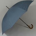 parapluiegentleman1