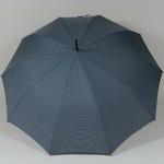 parapluiegentleman3