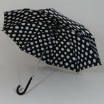 parapluiefloconnb2