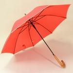 parapluieredwood3